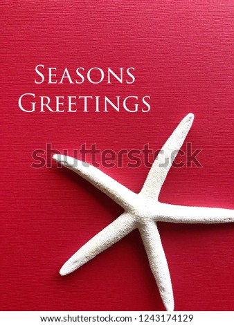 Seasons Greetings tropical holiday concept. White star fish against a cheery red background. #1243174129