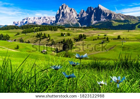 Seceda Mountains at the Dolomites, Trentino Alto Adige, Val di Funes Valley, South Tyrol in Italy, Odle Mountains in the background, Italy. Сток-фото ©