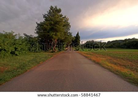 secondary road near Pola, Istria