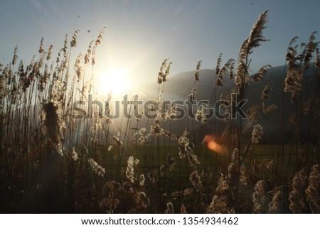 secret of majestic sunset  #1354934462