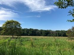 Secret serenity found in Brookfield, Wisconsin