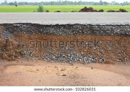 Section of asphalt road in a rural area with Paddy.