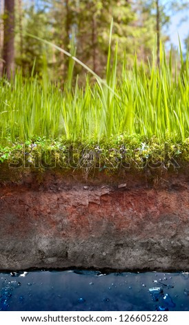 section of earth with grass and water