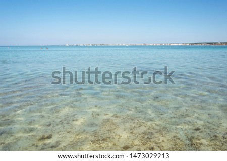 Section of Salento sea with clear sea, clear sky and sandy bottom.