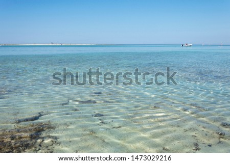 Section of Salento sea with clear sea, clear sky and sandy bottom.  #1473029216