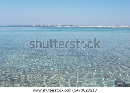 Section of Salento sea with clear sea, clear sky and sandy bottom.  #1473029219