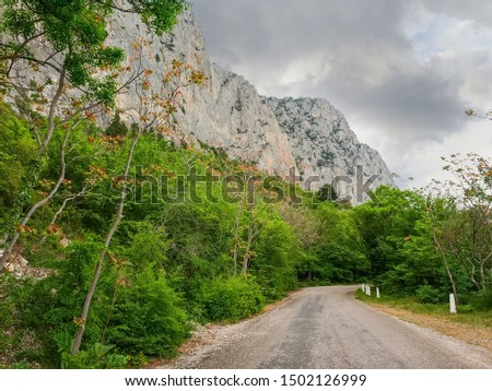 Section of the old mountain road in forest with concrete roadside posts along the steep limestone cliffs in summer overcast day