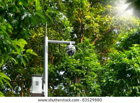 Security dome cctv in the garden near green trees and sun beams
