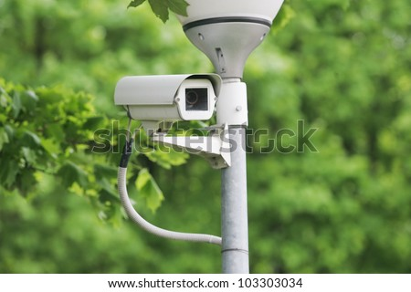 Security surveillance camera near green forest - stock photo