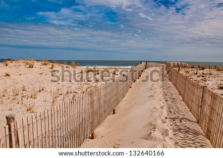 Seen here is a path to the beach in Cape Henlopen State Park, Delaware.