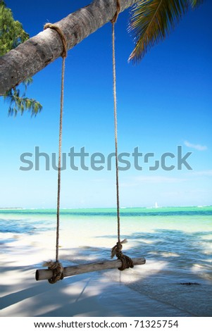 Seesaw on palm on tropical beach