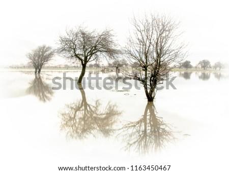 Sel baskınından yansımalar Stok fotoğraf ©