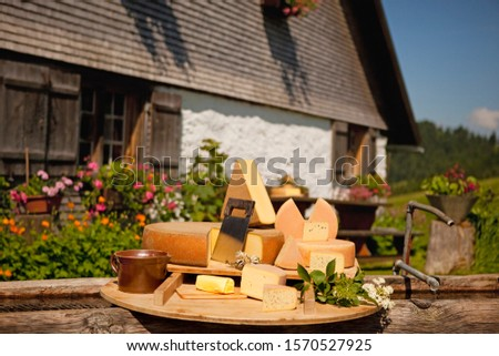 Selection of cheeses in garden in Oberstaufen, Allgau, Bavaria, Germany