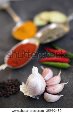 Selection of spices & garlic on slate - shallow dof with the Garlic in focus