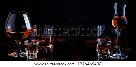 Selection of strong alcoholic drinks in glasses and shot glass in assortent: vodka, rum, cognac, tequila, brandy and whiskey. Dark vintage background, selective focus, copy space #1226466496