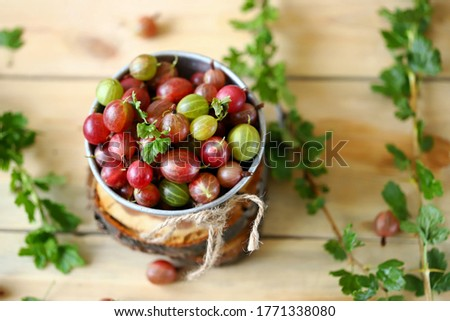 Selective focus. Macro. Gooseberries in a bowl on a wooden surface. Gooseberry leaves and branches. Harvest gooseberries. Rustic style. Stock photo ©