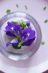 selective focus of clitorea ternatea commonly known as asian pigeonwings, bluebellvine, blue pea, butterfly pea, cordofan pea and darwin pea, white background