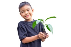 Selective focus of hands Asian child boy holding a little green plant with soil. Growing tree. Spring season. Save environment. Earth day. World day. On white background isolated.