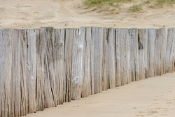 Selective focus of wooden wave breaker poles on the beach, Row of groyne at Dutch north sea coastline in summer, Helps to reduce the wave force and erosion of the shore, North Holland, Netherlands.