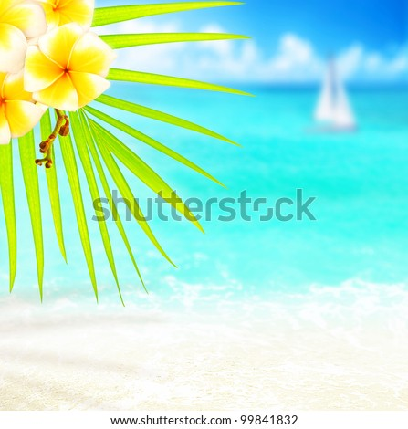 Selective focus on palm tree branch over tropical beach background, blue sea landscape, natural abstract card, floral border with frangipani plant, conceptual image summer of vacation and travel