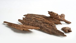 Selective Focus, Sticks Of Agar Wood Or Agarwood Background. The Incense Chips Used By Burning for incense & perfumes of essential oil as Oud Or Bakhoor