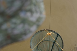Selective focused photo of crabbing drop net on blurred background with copyspace for runaround or wraparound text