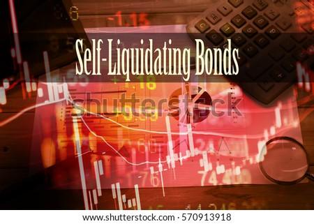 Self liquidating debt definition dictionary