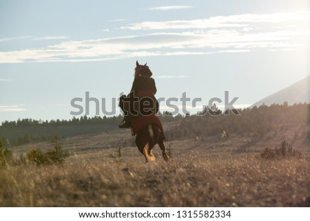 Seljuk and Otttoman soldier with horse,  Silhouette of man riding horse at sunset #1315582334
