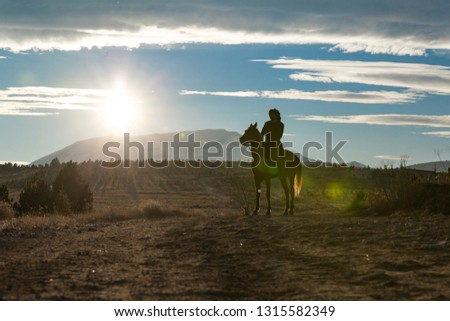 Seljuk and Otttoman soldier with horse,  Silhouette of man riding horse at sunset #1315582349
