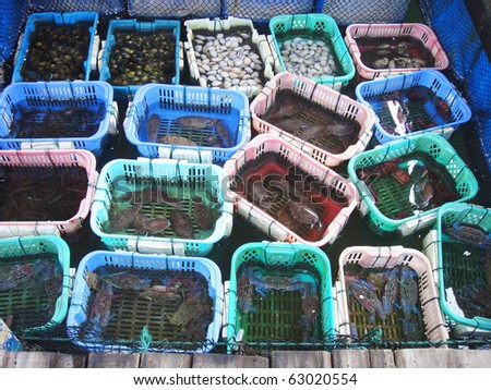 Sell fresh seafood in Ha Long bay in Vietnam - stock photo