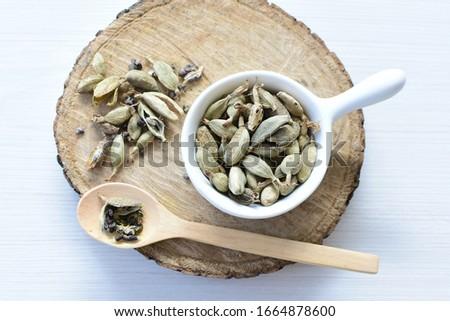 Semilla de cardamomo seco (Elettaria cardamomum) exhibidos en recipientes y cucharas Zdjęcia stock ©