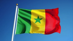 Senegal flag waving against clean blue sky, close up, isolated with clipping path mask alpha channel transparency