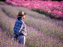 Senior Argriculturist keeps records of flowers in the garden. Farmer or owner standing in the middle of beautiful Lavender flowers field.