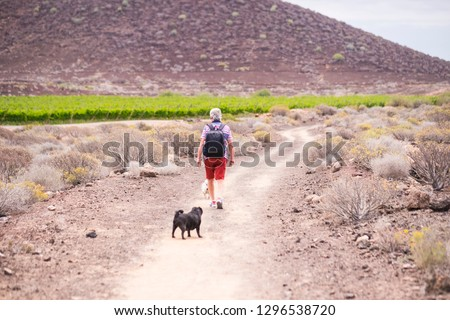 senior caucasian man have fun and enjoy a trekking walk in a path between mountain and vineyards with his companion dogs pug in totally friendship forever. together discovering new places #1296538720