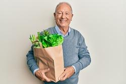 Senior caucasian man holding paper bag with bread and groceries looking positive and happy standing and smiling with a confident smile showing teeth
