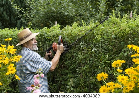senior clipping a hedge