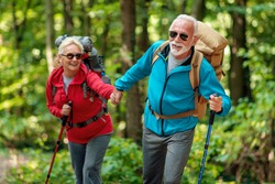 Senior couple of hikers walking in the forest.