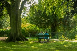 Senior Couple Relaxing In The Park. outdoor activity