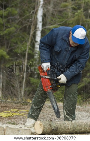 senior cutting a fallen tree with the chain saw - motion picture, Quebec, Canada
