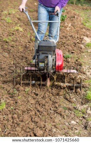 senior farmer gardener working in the garden with rototiller , tiller tractor, cutivator, miiling machine. Permaculture #1071425660