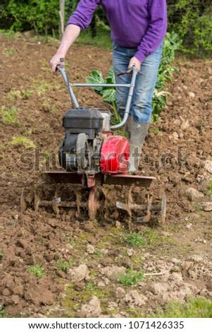 senior farmer gardener working in the garden with rototiller , tiller tractor, cutivator, miiling machine. Permaculture #1071426335