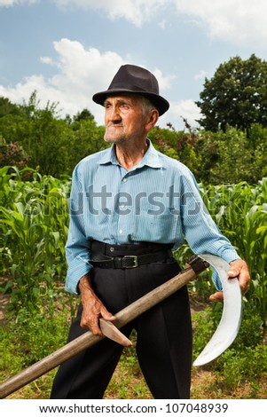 Senior farmer sharpening his scythe with a corn field and a forest in the background