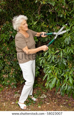 Senior lady gardener doing a little maintenance work on her shrubs - stock photo