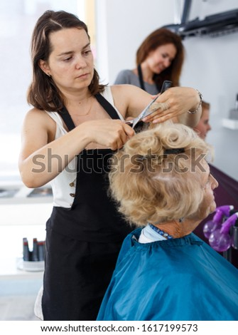 Senior lady getting haircutting by professional woman hairdresser in salon