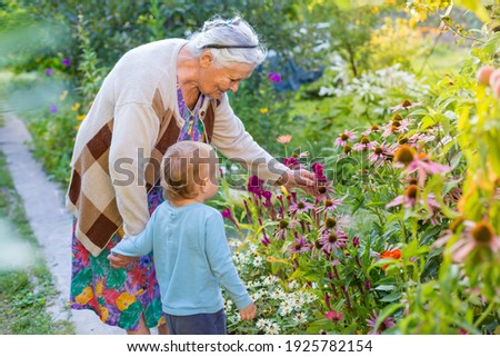 Senior lady playing with little boy in blooming garden. Grandmother with grand child  looking and admiring flowers in summer. Kids gardening with grandparent. great-grandmother and great-grandson.
