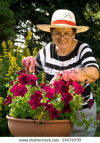 senior lady with her plants in the garden - stock photo