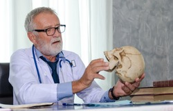 Senior male doctor working in the hospital. Is reviewing knowledge about the human skull. Medical and health care concept