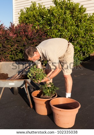 Senior male turning over dirt in wheelbarrow