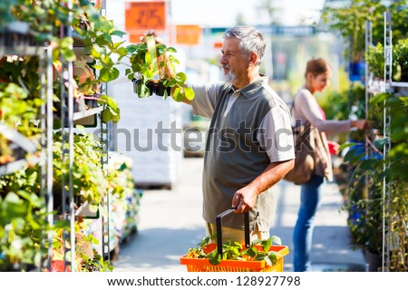 Senior man buying strawberry plants in a gardening centre