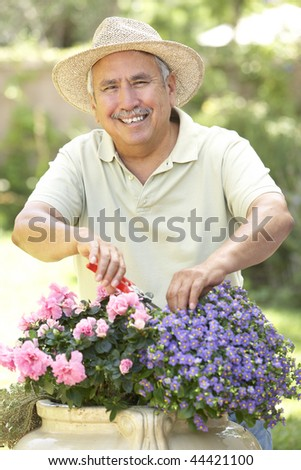 Senior Man Gardening #44421100